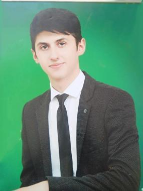 Web Developer - Hamid Hamidli