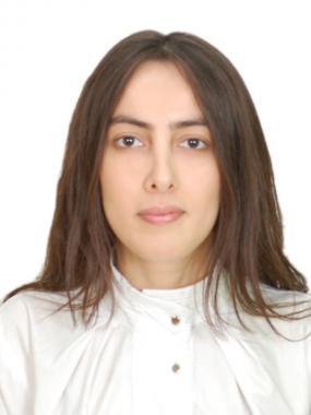 Data scientist - Leyla Mehtiyeva
